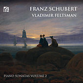 Schubert: Piano Sonatas, Vol. 2 by Vladimir Feltsman