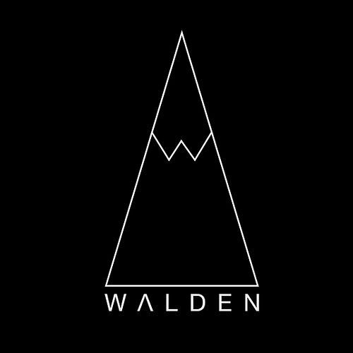Light by Walden