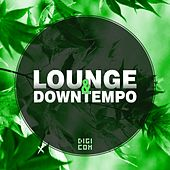 Lounge & Downtempo, Vol.1 by Various Artists