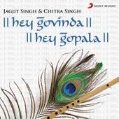 Play & Download Hey Govinda Hey Gopala (Mahamantra) by Chitra Singh | Napster