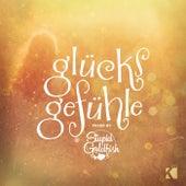 Glücksgefühle (Mixed by Stupid Goldfish) von Various Artists