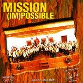 Mission (Im)possible by Cécilia Chermignon