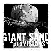 Play & Download Provisions by Giant Sand | Napster