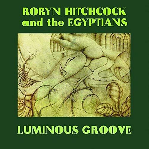 Luminous Groove by Robyn Hitchcock