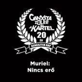 Nincs Erő by Muriel