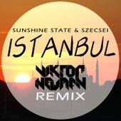 Istanbul (Viktor Newman Remix) by Sunshine State