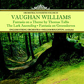 Vaughan Williams: Fantasia on a Theme by Thomas Tallis & Orchestral Favourites, Vol. III by English String Orchestra