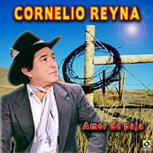 Play & Download Amor De Paja by Cornelio Reyna | Napster