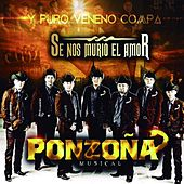 Play & Download Se Nos Murio el Amor by Ponzoña Musical | Napster