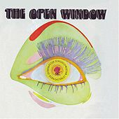 The Open Window by Peter Schickele
