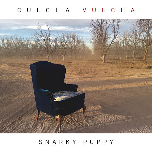 Play & Download Culcha Vulcha by Snarky Puppy | Napster