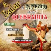 Play & Download A Bailar A Ritmo De Quebradita by Concepto | Napster