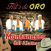 Play & Download Hit's De Oro by Los Montaneses Del Alamo | Napster