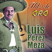Play & Download Hit's De Oro by Luis Perez Meza | Napster