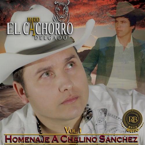 Homenaje A Chalino Sanchez, Vol. 1 by Mario