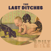 Play & Download Spilt Milk by The Last Ditches | Napster