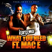 What You Need (feat. Mac E) by Karizma