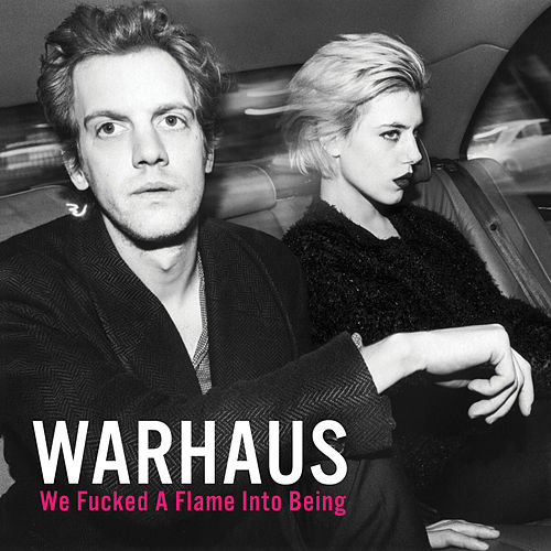 We Fucked A Flame Into Being von Warhaus