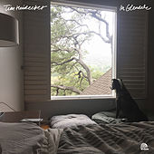 Play & Download Work from Home by Tim Heidecker | Napster
