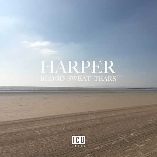 Blood Sweat Tears by Harper