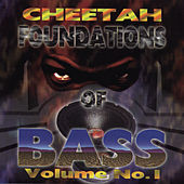 Foundations Of Bass Vol. 1 by DJ Magic Mike