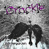 Play & Download Wintergarden by Grackle | Napster
