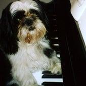 Play & Download Liszt Campanella - Ringtone by Ben Choupak | Napster