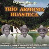 Play & Download 20 Super Exitos by Trio Armonia Huasteca | Napster