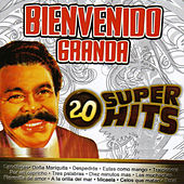 Play & Download 20 Super Hits by Bienvenido Granda | Napster