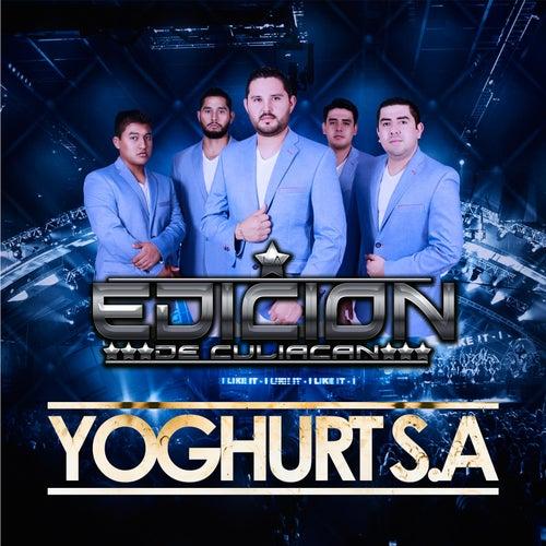 Play & Download Yoghurt S.A by La Edicion De Culiacan | Napster
