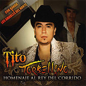 Play & Download Corrido De Chalino Sanchez by Tito Y Su Torbellino | Napster