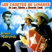 Jesus Malverde by Los Cadetes De Linares