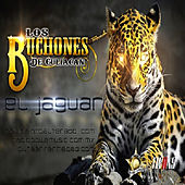 Play & Download El Jaguar (Single) by Los Buchones de Culiacan | Napster
