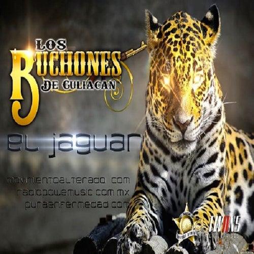 Play & Download El Jaguar (Single) by Los Buchones de Culiacan | Napster