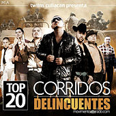 Play & Download El Movimiento Alterado - Top 20 Corridos Delincuentes by Various Artists | Napster