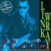 Walking Down A Street Called Love by Link Wray