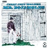 Mr. Bojangles by Jerry Jeff Walker