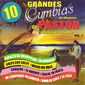 Play & Download 10 Grandes Cumbias Al Estitlo de Pastor, Vol. 1 by Various Artists | Napster