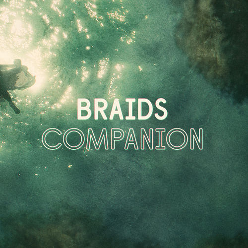 Play & Download Companion (Single) by Braids | Napster