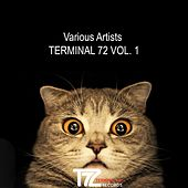 Play & Download Terminal 72, Vol. 1 by Various Artists | Napster