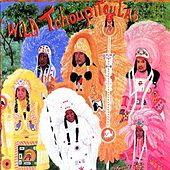 Play & Download The Wild Tchoupitoulas by Wild Tchoupitoulas | Napster