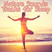 Nature Sounds Tracks for Sleep by Various Artists