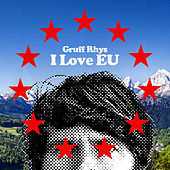 Play & Download I Love EU by Gruff Rhys | Napster