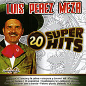 Play & Download 20 Super Hits by Luis Perez Meza | Napster