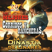 Play & Download 20 Exitos Los Mejores Corridos y Rancheras by Various Artists | Napster