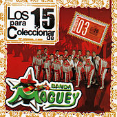 Play & Download Los 15 Para Coleccionar by Banda Maguey | Napster