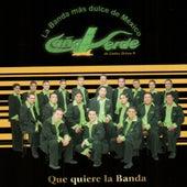 Play & Download Que Quiere La Banda by Banda Cana Verde | Napster
