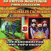 20 Exitos Nortenos Para Coleccions by Various Artists