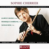 Flute Panorama - Sophie Cherrier by Sophie Cherrier
