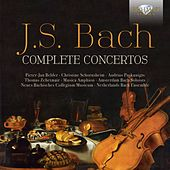 Play & Download J.S. Bach: Complete Concertos by Various Artists | Napster